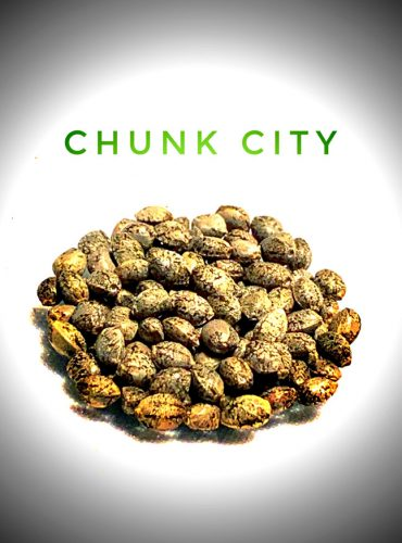 Chunk City Seed Labeled Pro